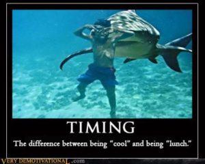 timing-meme