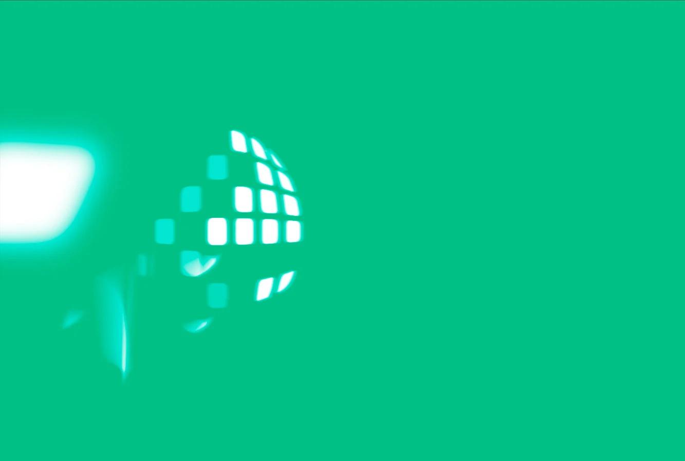 FLINTpro animated logo